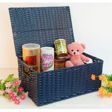 Rectangular Plastic Rattan Storage Trunk